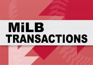 Minor League Transactions